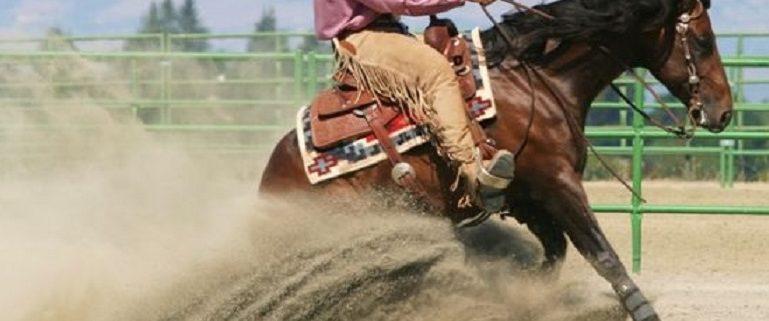 Horse completing Reining Futurity signature slide